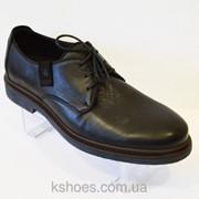 Черные мужские туфли Kadar 2442414 фото