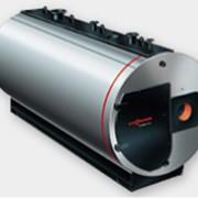 Трехходовой паровой котел низкого давления Vitomax 200-LS фото