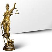 Представительство интересов в судах и государственных органах фото