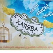 Обложка Для Зачетной Книжки Халява! Ловись! фото