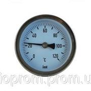 WATTS Термометр ТВО63 mm. L=45mm. 0-120 осевой фото