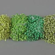 Тычинки в сахаре 850 шт 5896 фото