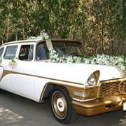 Прокат раритеного авто на свадьбу фото