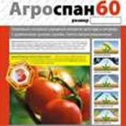 Укрывной материал Агроспан 60-3,2 свернутый фото