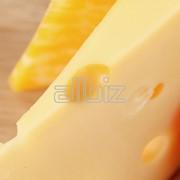 Сыр мягкий «Легенда Алтая» фото