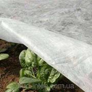 Агроволокно Plant Protex 30 г\м2 фото