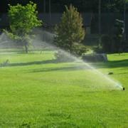 Системы полива, система полива газона, системы автоматического полива газонов фото