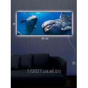 Картина c подсветкой 29х69 Дельфиний Заплыв фото