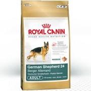 Корм для собак Royal-Canin фото