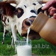 Заменители молока,Корма для животных фото