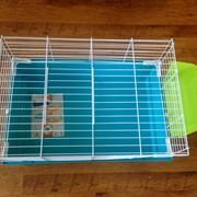 Клетка для кроликов и морских свинок фото