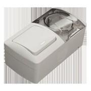EVA Выключатель с подсветкой+Розетка с заземлением с прозрачной крышкой накладной светло-серый IP54 554-011500-921 фото