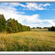 Правовой аудит земельных участков фотография