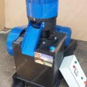 Гранулятор топливных пеллет GRAND-300 фото