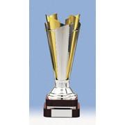 Атрибутика наградная, Киев, кубки спортивные, кубки призовые, трофеи, награды фото