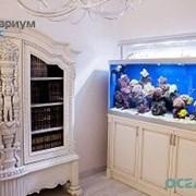 Изготовление аквариумов морских и пресноводных фото
