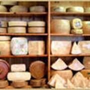 Сыр Моцарелла (россия) фото