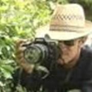 Услуги частного детектива краснодар фото