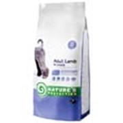 Корм для собак Nature's Protection Adult Lamb 4 кг фото