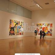 Организация художественных выставок фото