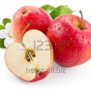 Яблочный ПАВ SODIUM COCOYL APPLE AMINO ACID фото