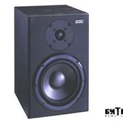 Активный студийный монитор Soundking SKMT800A фото