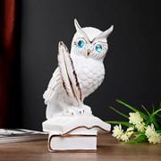 """Сувенир керамика """"Белый филин на книгах с пером"""" с золотом 28х14,5х17,5 см фото"""