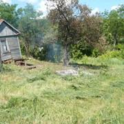 Продам земельный участок, с.Маслии (Дергачевский р-н) фото