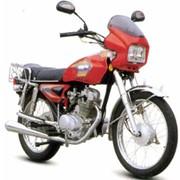 Мотоциклы Allegator YH125-2S6 фото