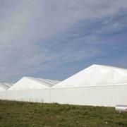 Складской тент Storage tent H-Line 30м h420 фото