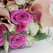 Ууслуги по оформлению свадеб фото