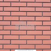 Строительство стен Киев фото