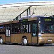 Городские автобусы Lion's City T фото