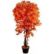 Искусственное дерево Клен Пако (Код товара: 44439) фото