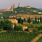 Отдых в Тоскане фото