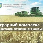 Аспирантура при Институте Аграрной экономики фото