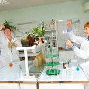 Рекомендация по организации микробиологического контроля в консервном производстве фото