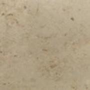 Известняк Юрский мрамор фото