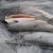 Рыба кижуч б/г фото