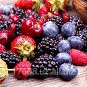 Кисель лесная ягода фото