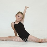 Трико гимнастическое Т114 фото