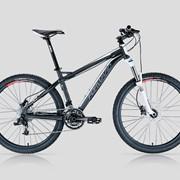 Велосипед горный Forward 1312 фото