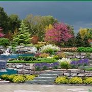 Благоустройство участка, сада, ландшафтный дизайн, Херсонская область фото