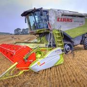 Уборка урожая по всей территории Украины!!! фото