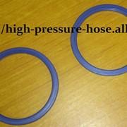 Уплотнительное кольцо GPPO-20 фото