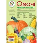 Овочі. Комплект наочності. Будна Н. О. 20-29 см. 24 сторінок фото