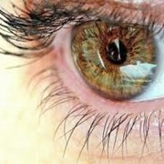 Назначение очковой коррекции, профилактика и лечение глазных болезней фото