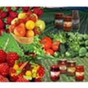 Консервы овощные фото