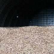 Технологии получения энергии из биомассы Разработка проектов совместного осуществления (СО) в рамках Киотского протокола Энергосберегающие технологии и возобновляемые источники энергии фото