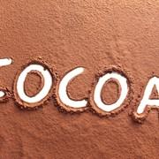 Натуральное какао порошок фото